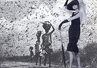 Joe Webb - Selected collages - image asset 3